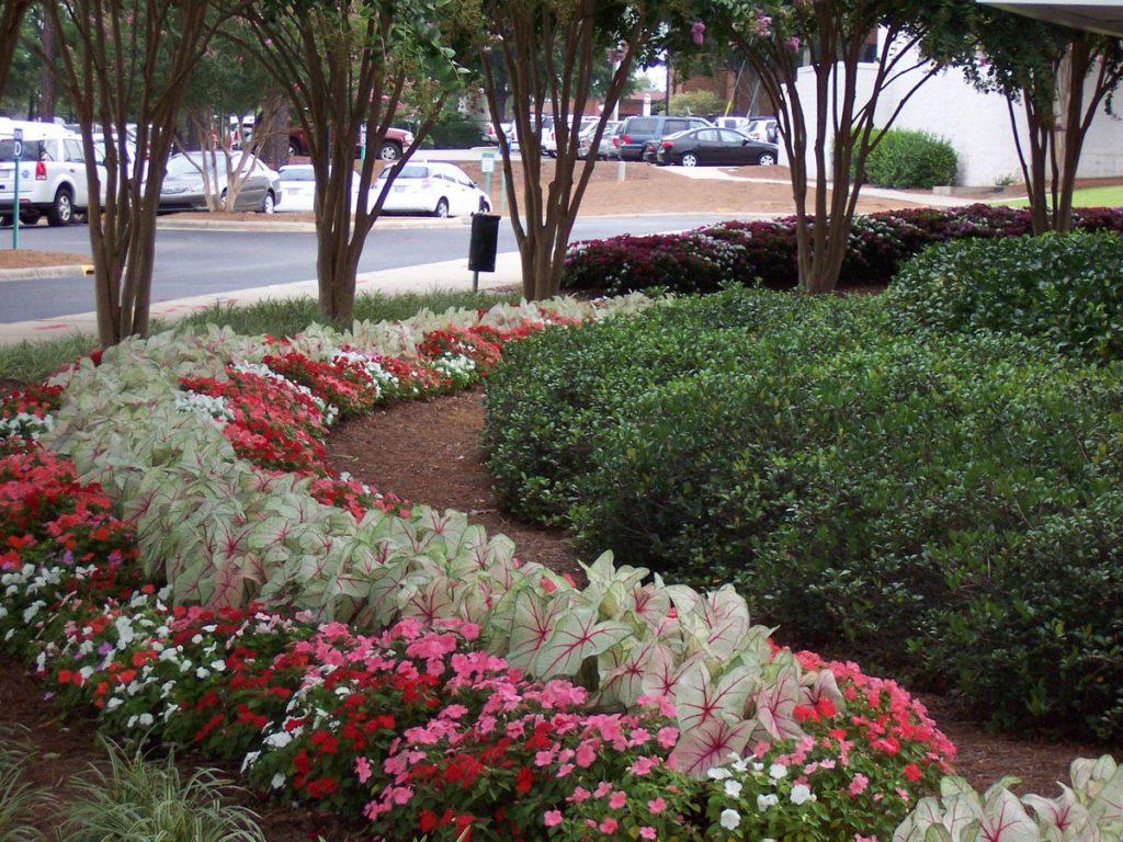 Professional Landscaping Company near Pinehurst NC